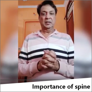 Importance of spine